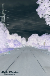 Road to somewhere (inverted)